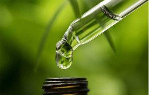 simpson oil